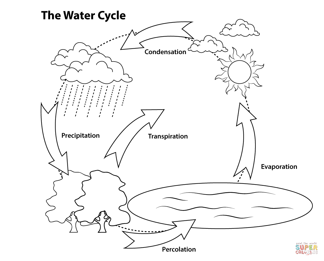 1125x907 Water Cycle Drawing Drawing Water Cycle Coloring Page 12