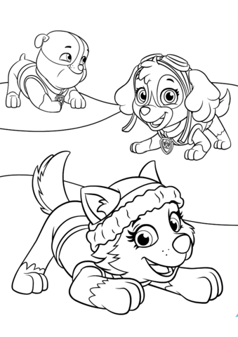 339x480 Everest Plays With Skye And Rubble Coloring Page Free Printable