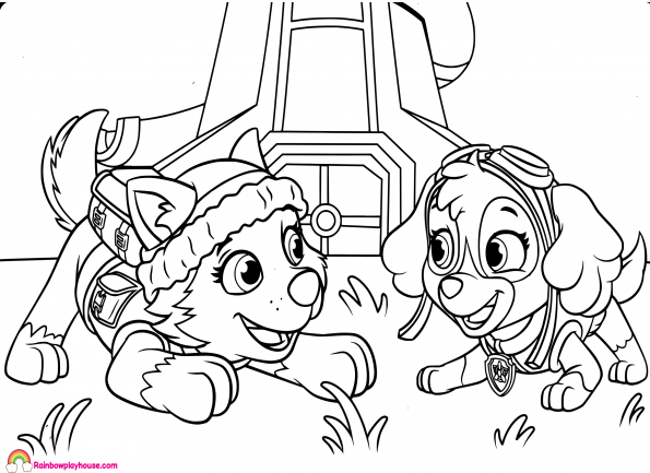 595x433 Paw Patrol Skye And Everest Coloring Page
