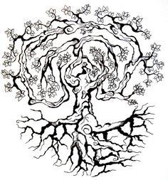 236x253 Evergreen Tree Tattoo Evergreen Tree On Tumblr Trees Tattoo