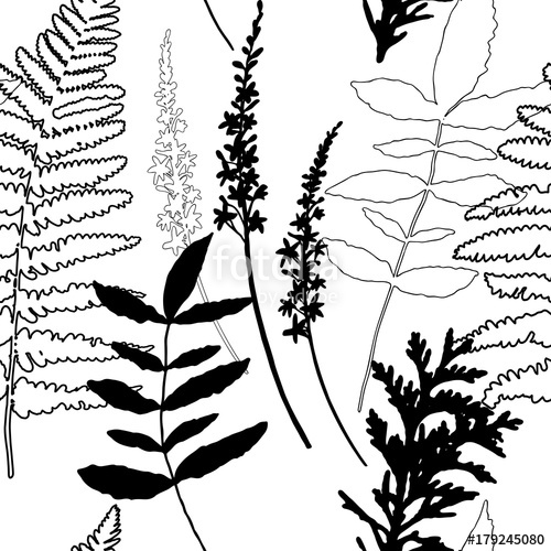 500x500 Floral Vector Seamless Pattern With Wild Flowers, Fern Leaves