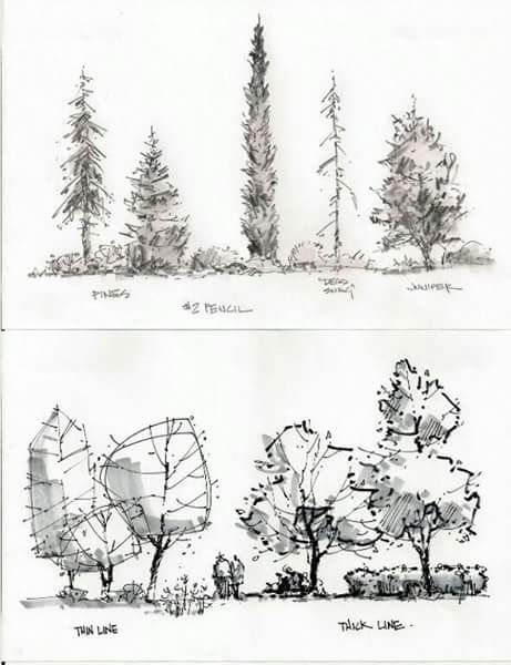 461x600 Sketch Sketching Sketches, Landscaping