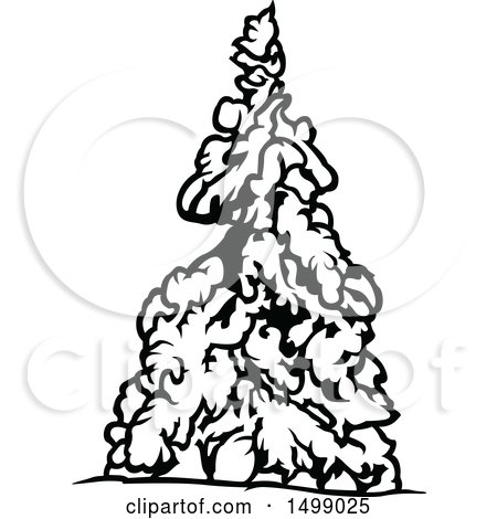 450x470 Clipart Of A Snow Flocked Evergreen Tree