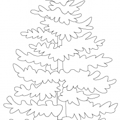 234x234 Evergreen Trees Coloring Pages