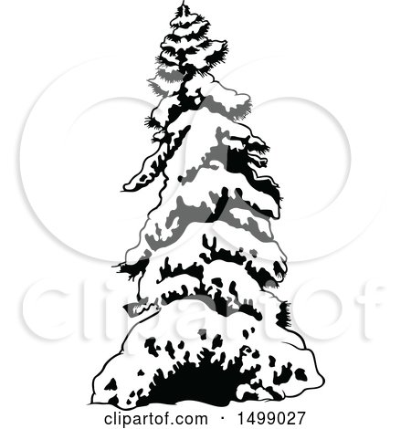 450x470 Clipart Of A Border Of Snow Flocked Evergreen Trees