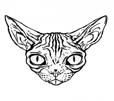 450x400 Sketch Of Evil Cat Of The Sphinx, Close Up, Isolated Stock