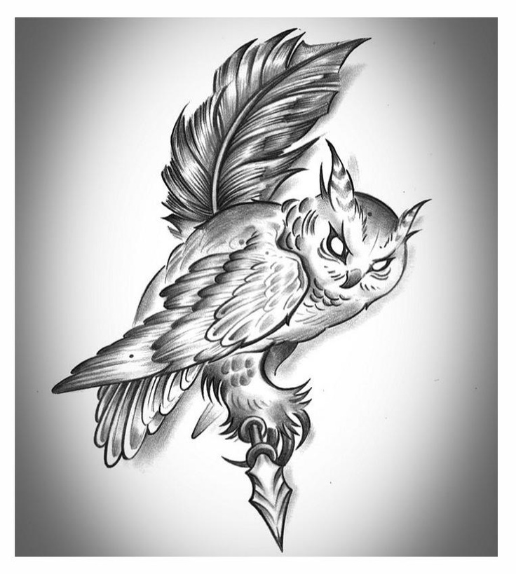 736x819 89 Best Coruja Images On Owls, Owl Tattoos And Tattoo
