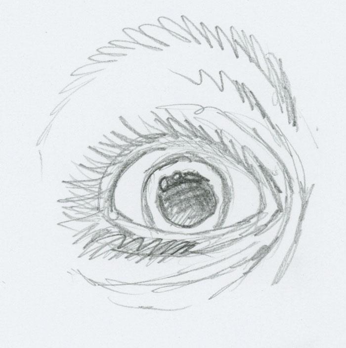 700x703 Index Of Ilil.colored Pencil Skills