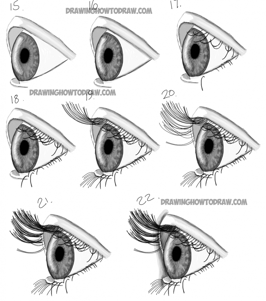 904x1024 Drawing A Eye Step By Step How To Draw Realistic Eyes