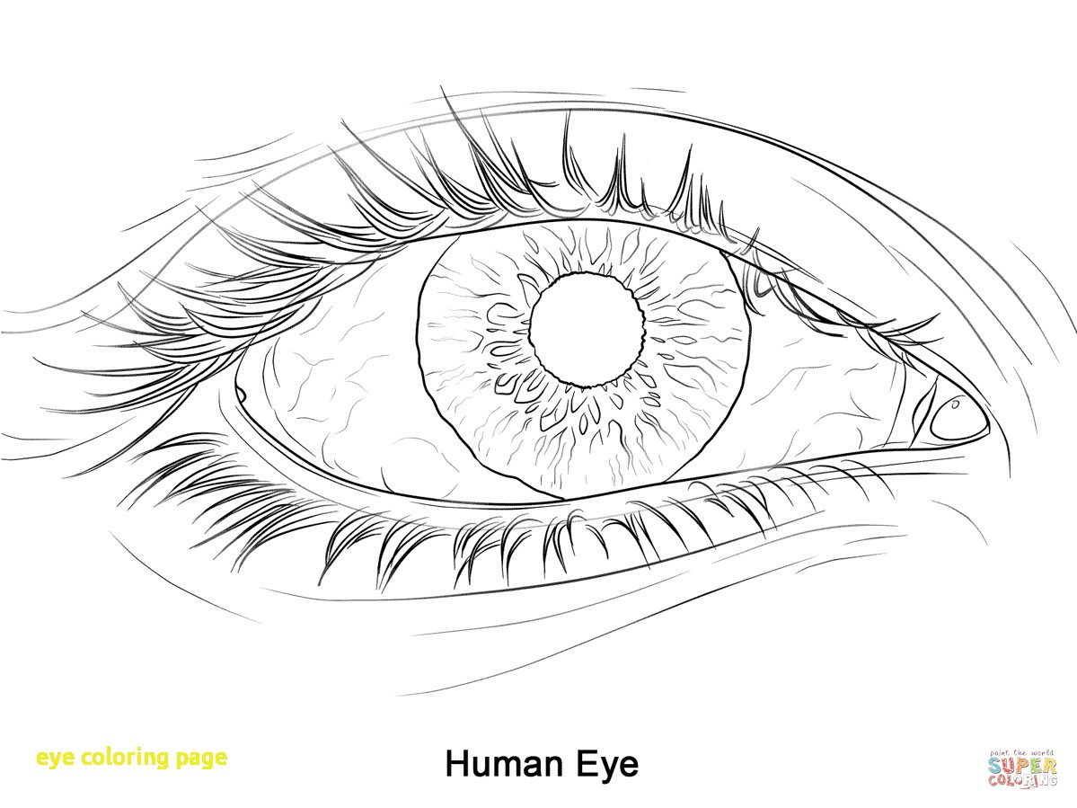 1199x899 Eye Coloring Page With Plain Decoration Eye Coloring Page Eyes