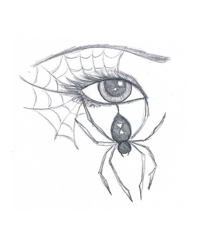 811x985 Spider Eye By Marissawalker
