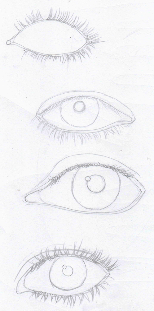 497x1000 Weekly Doodles And Tuts Drawspace Lesson H04 How To Draw Eye