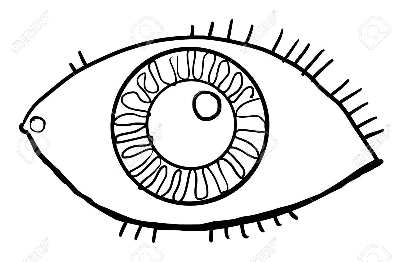 1300x845 Hand Drawn, Eye, Vector Illustration, Isolated On White Royalty