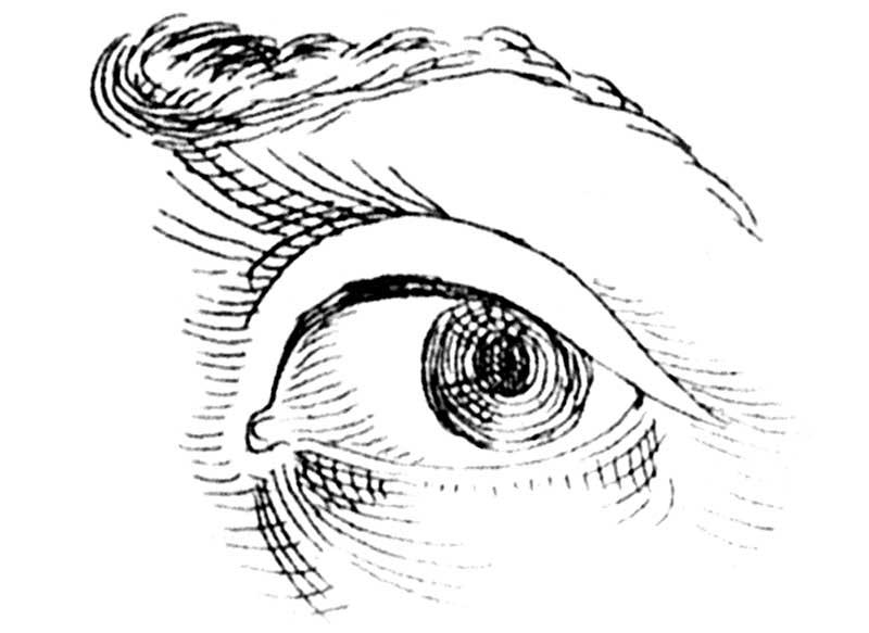 800x583 The Eyeballing Game Sight Size