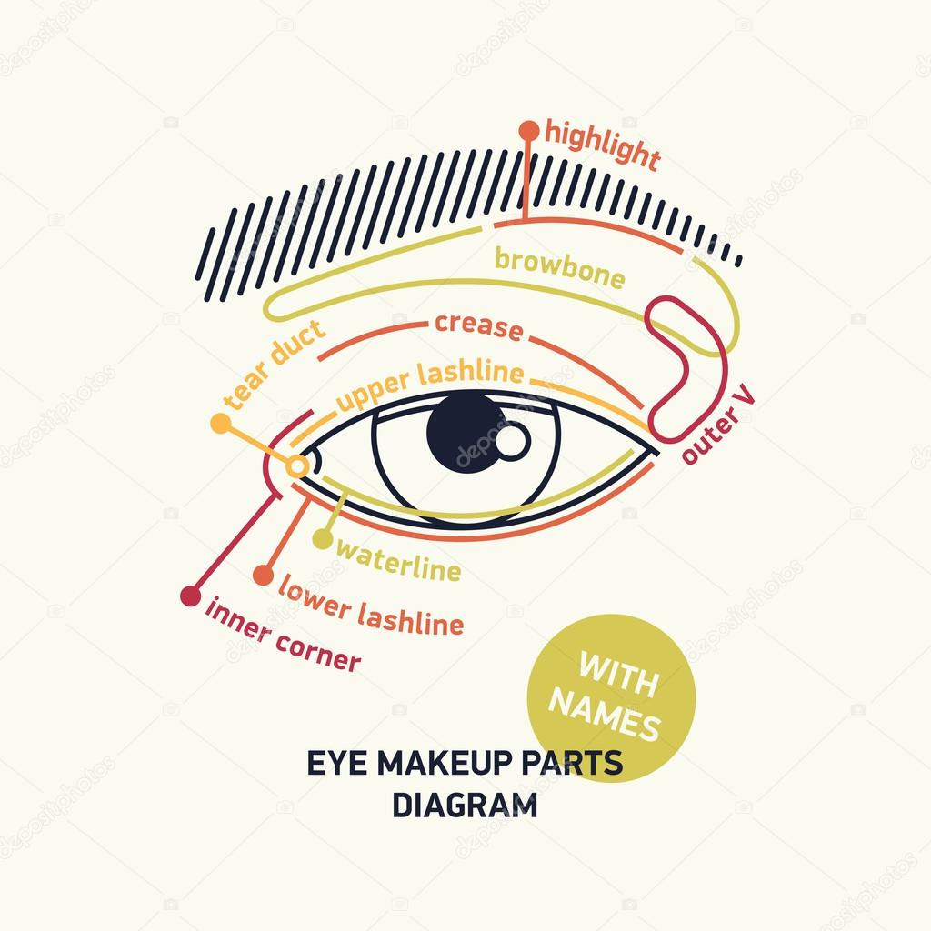 1024x1024 Diagram For Eye Makeup With Names. Stock Vector Masha Tace
