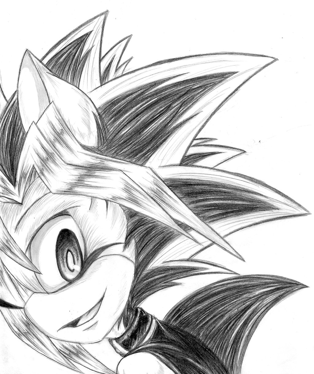 1024x1218 Yugi The Hedgehog By Dgshadowchocolate