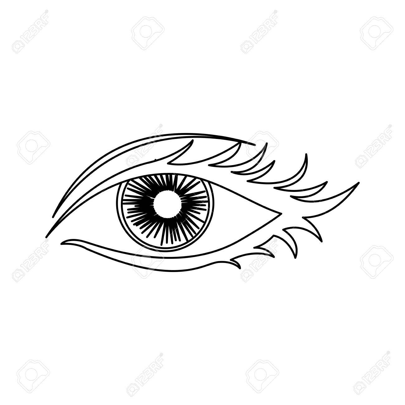 1300x1300 Outline Woman Eye Opened Icon Vector Illustration Royalty Free