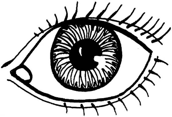 600x410 Eyes Coloring Page
