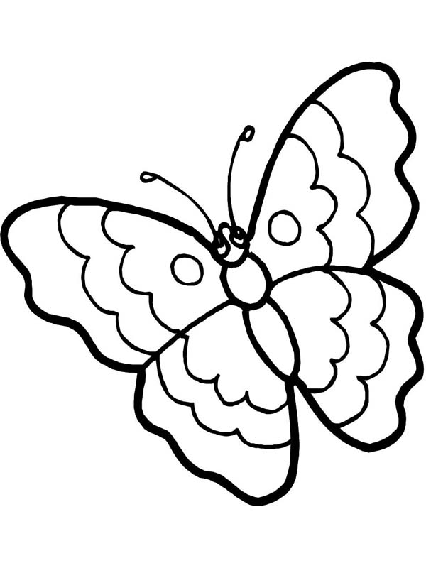 600x800 Cartoon Butterfly In Sad Eyes Coloring Page
