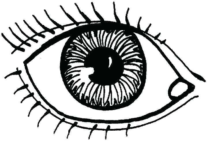 718x491 Eye Coloring Page Eyes How To Draw Eyes Coloring Page Eye Anatomy