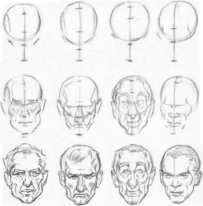 655x667 Drawn Head Perspective Chart