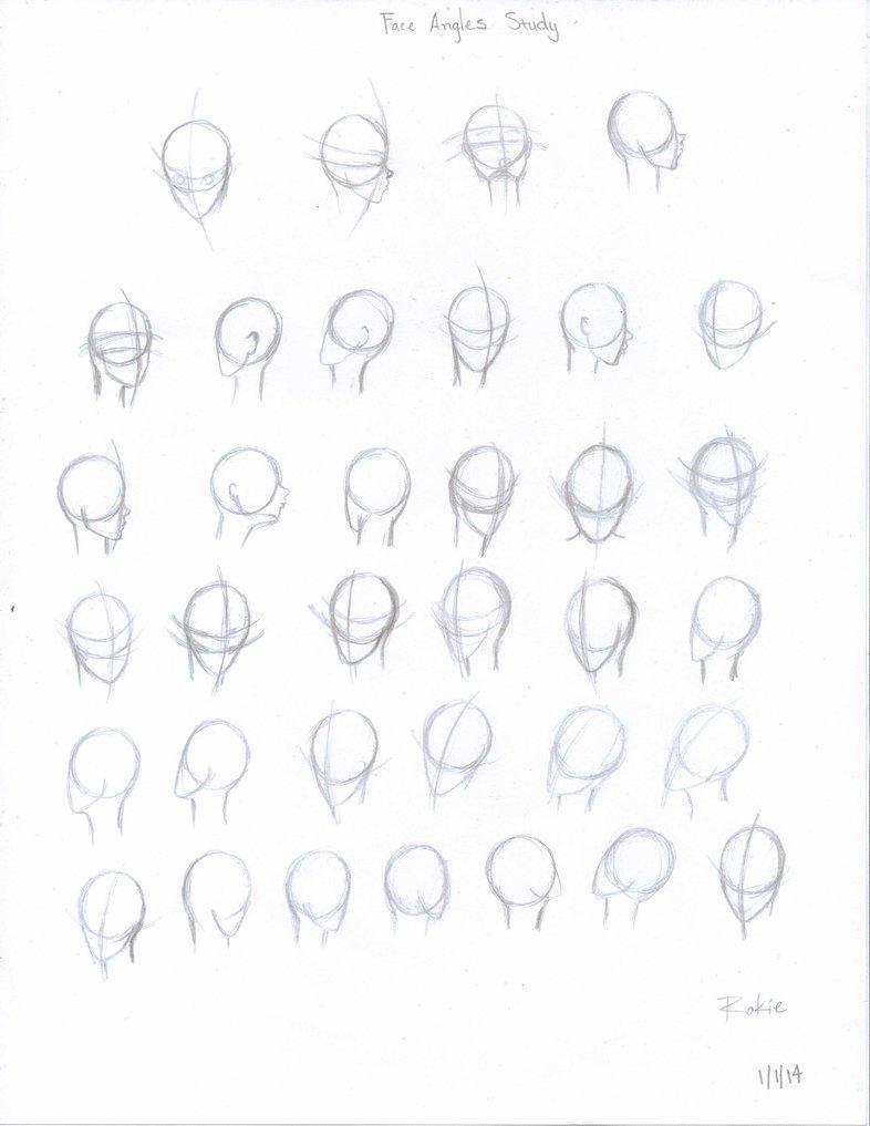 786x1017 Face Angles Study (1114) By Rokiebluerose