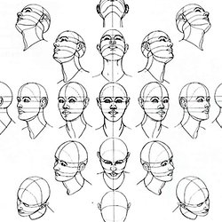 250x250 How To Draw The Head From Any Angle Pearltrees