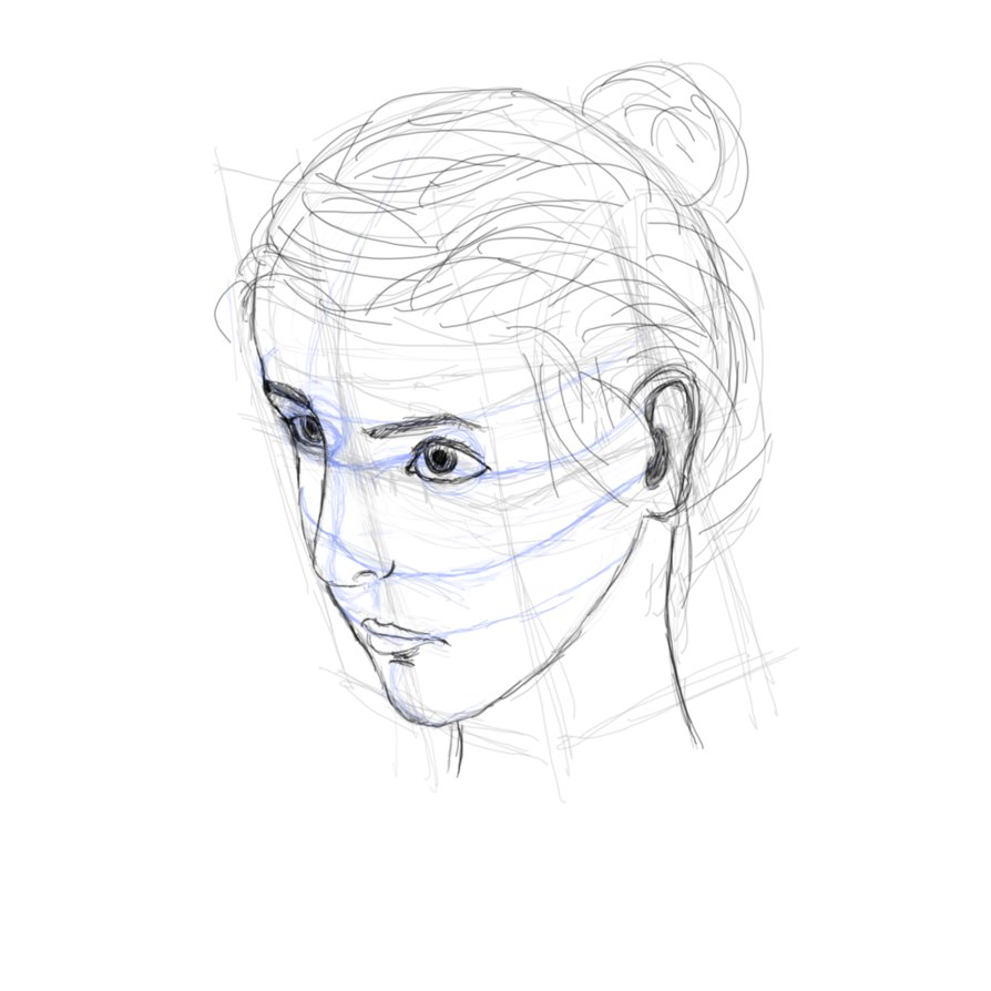 894x894 Face Proportions 3.2