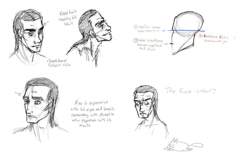 800x533 Rex Facial Construction By Romanjones