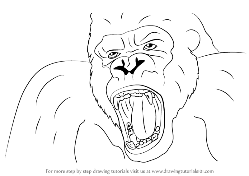 800x566 Learn How To Draw King Kong Face (King Kong) Step By Step
