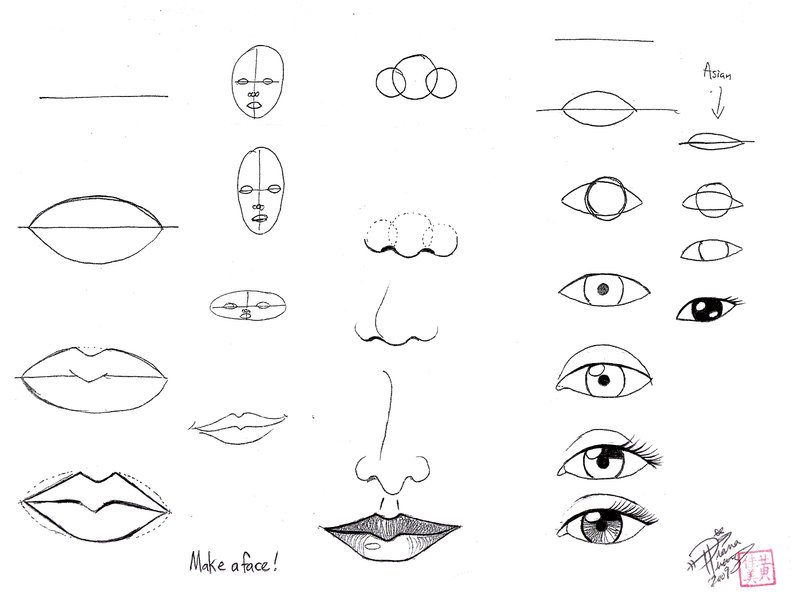 800x606 Draw Face Parts by Diana Huang on DeviantArt
