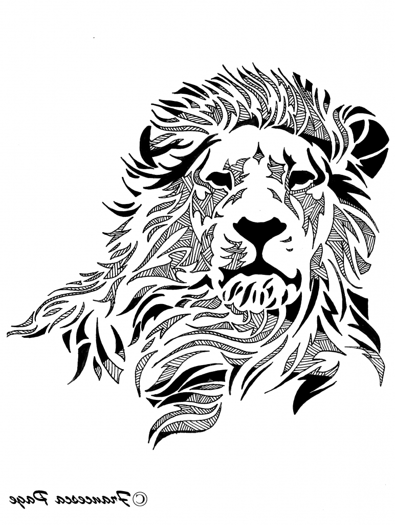 772x1024 Face Of A Lion Drawing 1000 Ideas About Lion Drawing