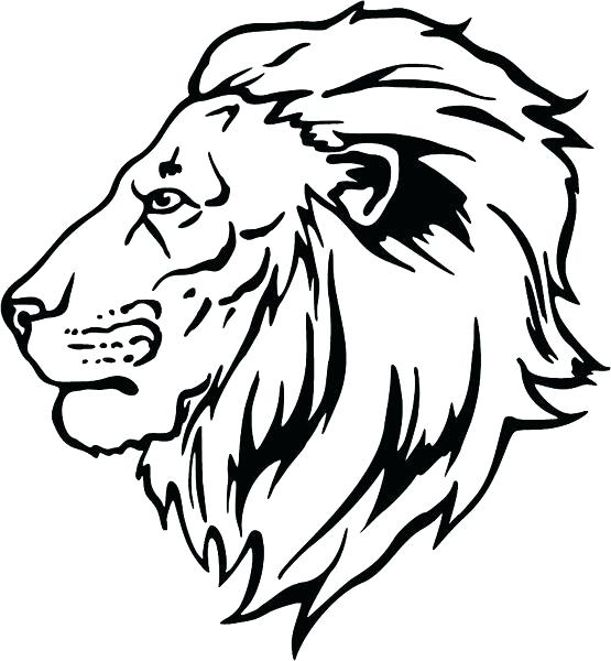 555x600 Head Coloring Page Lion Head Coloring Pages Lion Head Colour Ideal