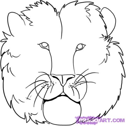 491x490 How To Draw Lions Drawing Tutorials Amp Drawing Amp How To Draw Lion