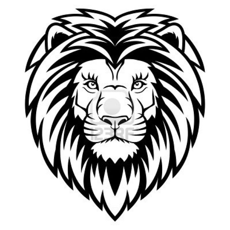 736x736 How To Draw A Lion Head