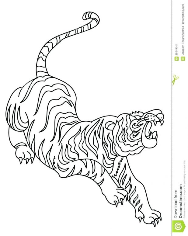 618x776 Coloring Pages Mesmerizing Tiger Outline Drawing. Tiger Face