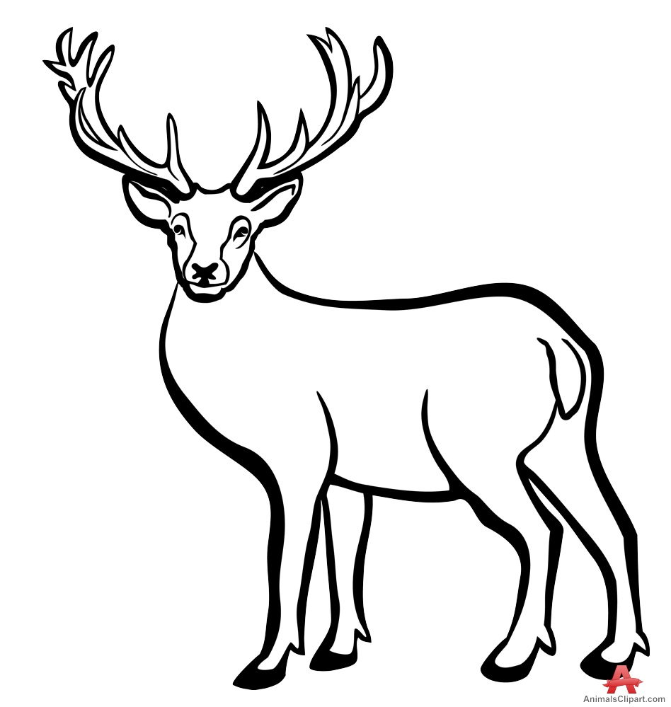 948x999 Deer Outline Drawing Deer Head Drawing Outline