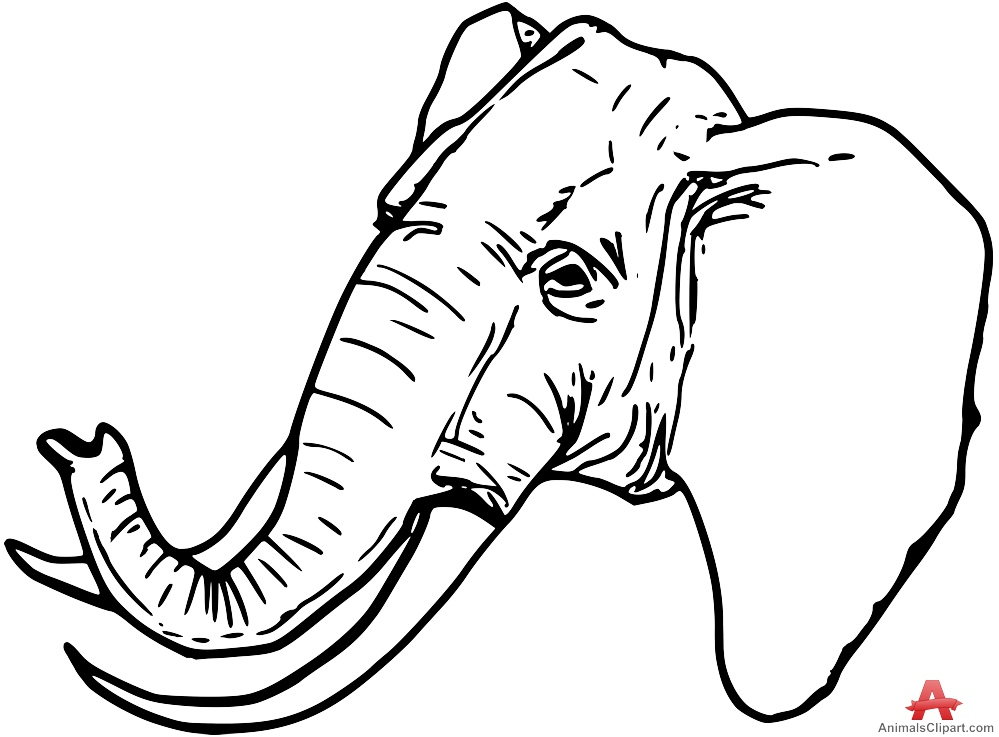 999x737 Elephant Head Outline
