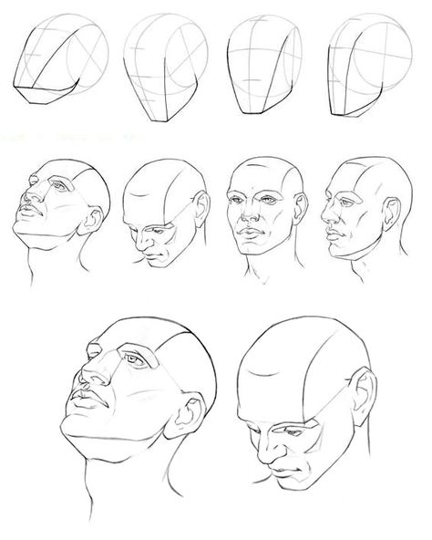 Face Perspective Drawing