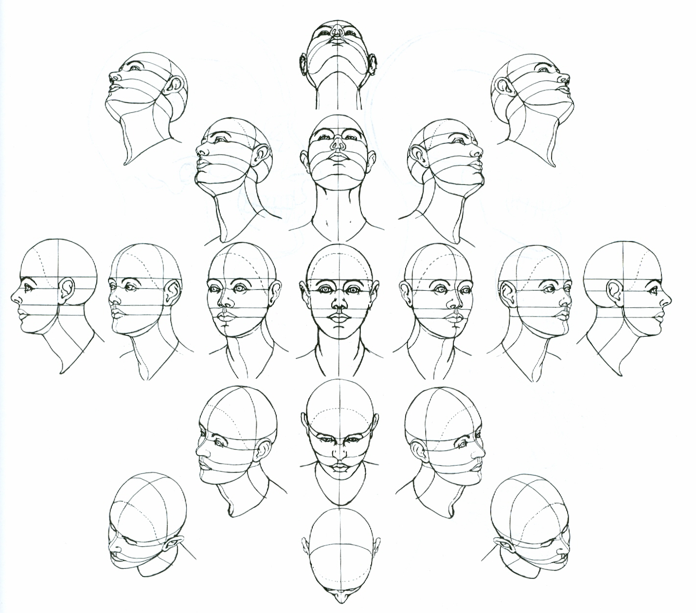 Face Perspective Drawing At Getdrawings Com Free For