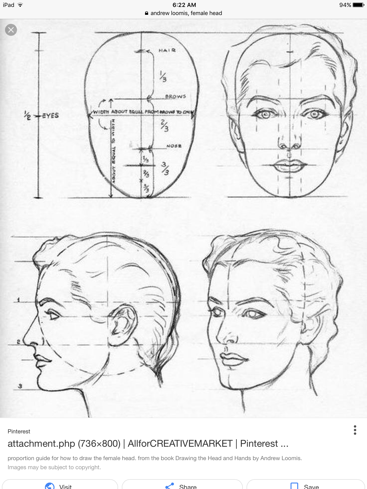 Face Proportion Drawing at GetDrawings.com | Free for personal use ...