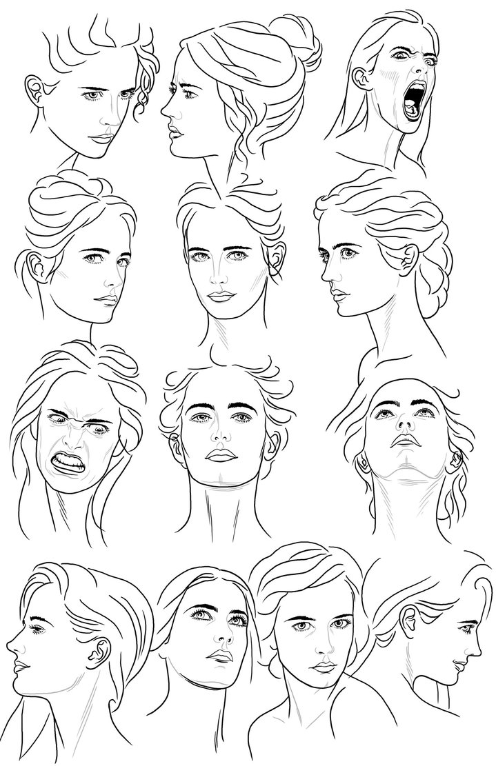 Face Reference Drawing at GetDrawings com | Free for