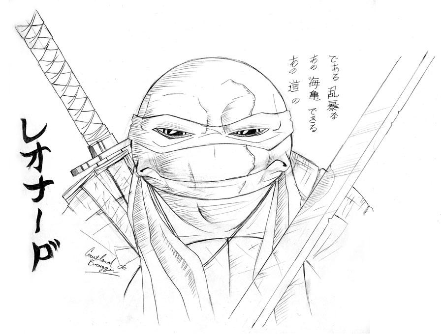 900x682 Leo Face Study By Ninja Turtles