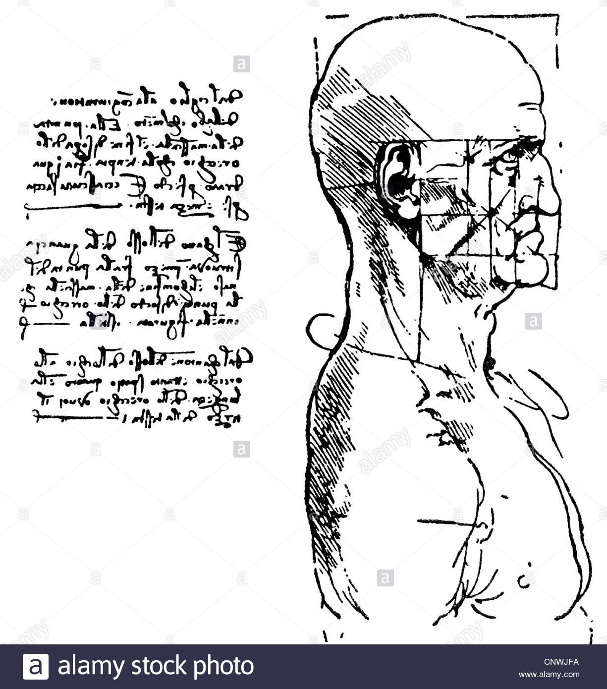 1225x1390 Fine Arts, Leonardo Da Vinci (1452