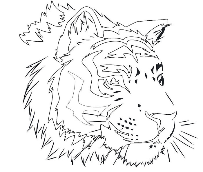 700x591 Tiger Shape Templates, Crafts Amp Colouring Pages Free
