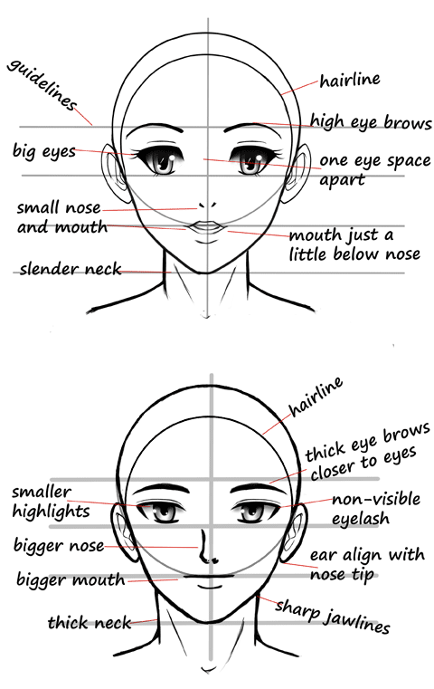 480x761 Manga Reference Charts Female Faces, Acrylics And Paintings