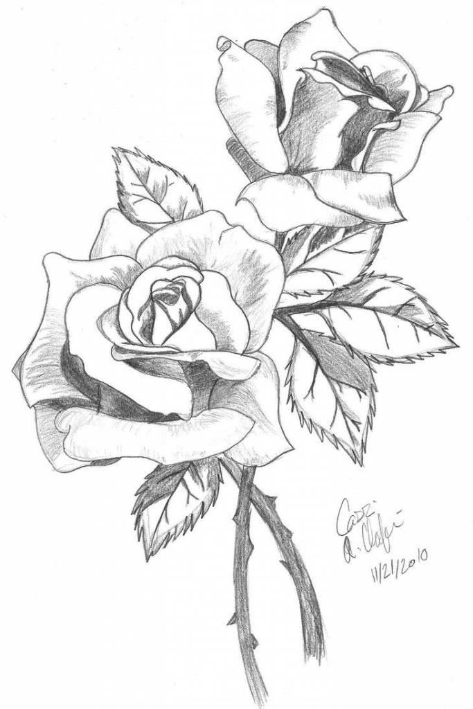 683x1024 Drawing A Rose In Pencil Rose Drawings How To Draw A Rose Drawing