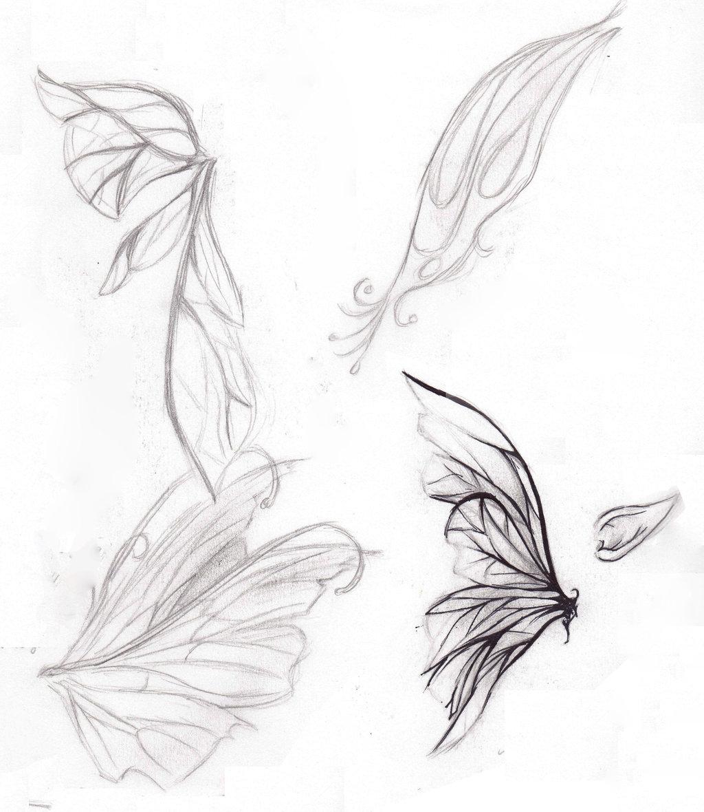 1024x1180 Fairy Wings Drawings