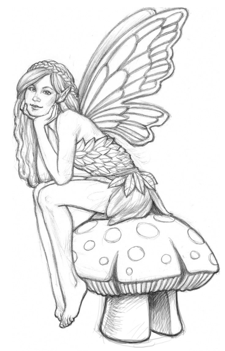 735x1146 Line Art Drawings Of Fairies Fairy Pictures To Colour