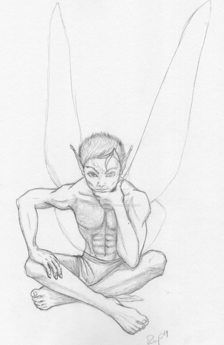 720x1108 Fairy Boy Pencil Sketch By Gabrielleswings